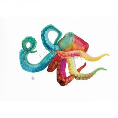 color-octopus