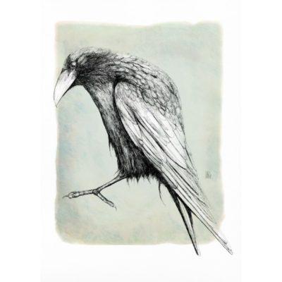 corb-linea