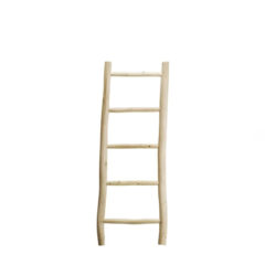 DOUM-LADDER